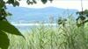 Keutschacher Pfahlbauten sind UNESCO-Welterbe