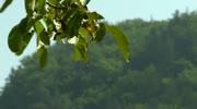 Ausflugsziele Kärnten - Der Kanzianiberg