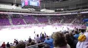 Die Olympischen Winterspiele 2014 in Sotschi