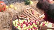 Apfelfest in St. Georgen im Lavanttal