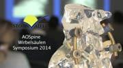 AOSpine Wirbelsäulen Symposium 2014 am LKH Stolzalpe