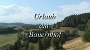 Urlaub am Bauernhof - Buschenschenke Hanebauer
